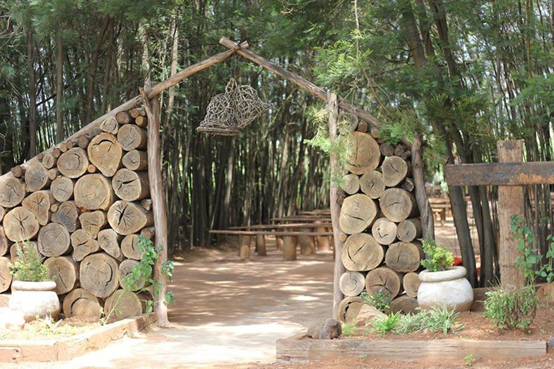Forest Wedding Chapel Entrance
